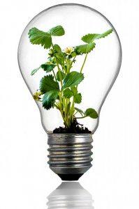 Offres électricité verte